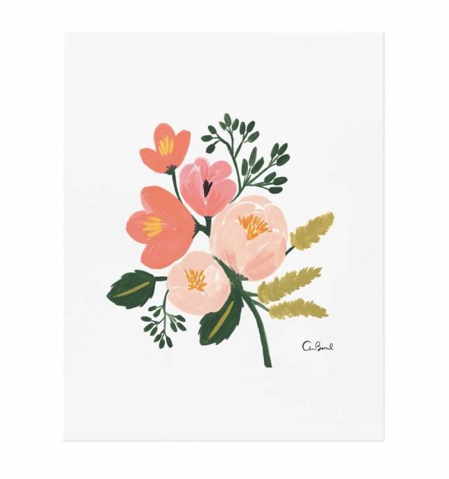 rose-botanical-illustrated-art-print-01_1